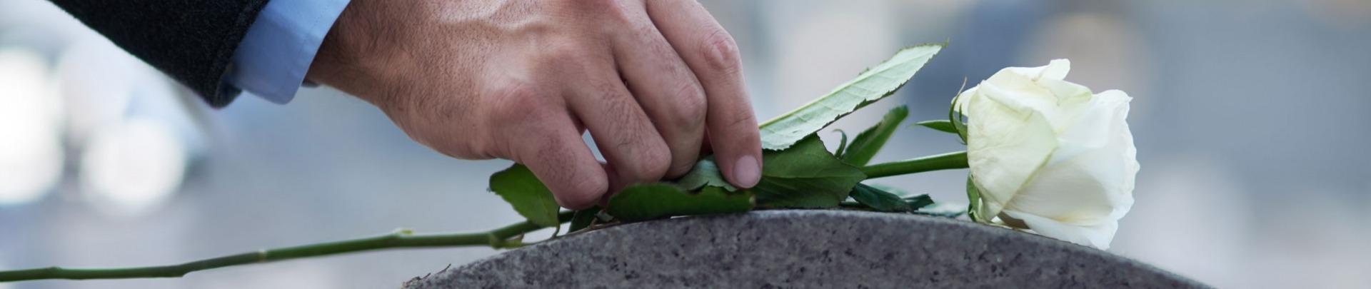 Een man legt een witte roos op een grafsteen